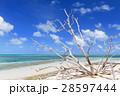 オーストラリアグリーン島 28597444