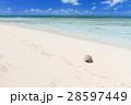 オーストラリアグリーン島 28597449