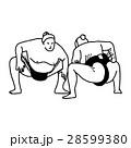 Sumo wrestling fight - vector illustration  28599380