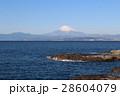 江ノ島 稚児ヶ淵から海越しに見る富士山 神奈川県 28604079