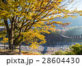 秋の世界遺産 白川郷 28604430