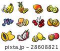 輸入果物 28608821