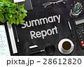 概要 要約 報告のイラスト 28612820