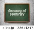 セキュリティ セキュリティー 安全のイラスト 28614247