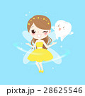 teeth with tooth fairy 28625546
