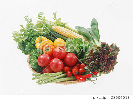 野菜いろいろ 28634013