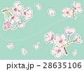 桜の花(グリーン) 28635106