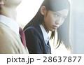 女子高生 高校生 カップルの写真 28637877