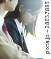 高校生 カップル 同級生の写真 28637885
