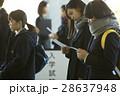 試験会場 受験票を確認する学生 28637948