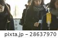 大学受験 女子 高校生の写真 28637970