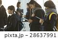 試験会場 受験票を確認する学生 28637991