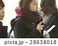 女子高生 合格発表 受験生の写真 28638018