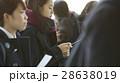 女子高生 合格発表 受験生の写真 28638019