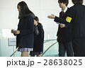 大学受験 女子 高校生の写真 28638025