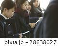 女子高生 合格発表 受験生の写真 28638027