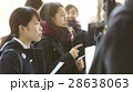 女子高生 合格発表 受験生の写真 28638063