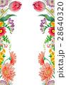 花 春 水彩のイラスト 28640320