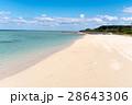 沖縄 小浜島 細崎海岸の写真 28643306