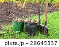 農作物 収穫 実りの写真 28645337