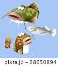 水辺の生き物 28650894