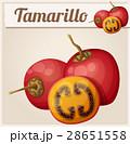 Tamarillo fruit. Cartoon vector icon 28651558