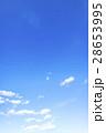 青空 空 雲 冬の空 背景 背景素材 2月 コピースペース 28653995