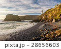 Yaquina Head Lighthouse at Pacific coast 28656603
