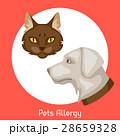 Pets allergy. Vector illustration for medical 28659328