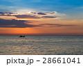 きれい 美しい 空の写真 28661041