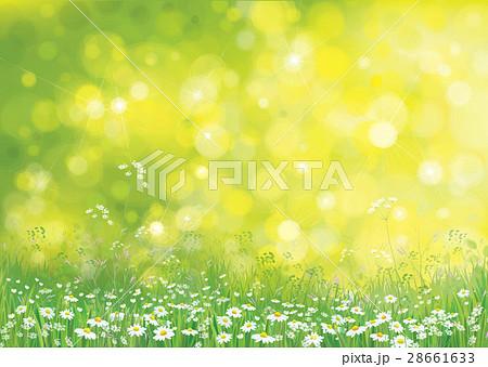 Vector summer nature  background. 28661633