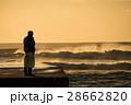 金色の海と男性 28662820