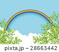 新緑(若葉) 28663442