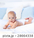Baby in diaper in bed. Newborn at home. 28664338