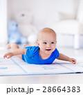 ベビー 赤ちゃん 赤ん坊の写真 28664383