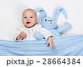 ベビー 赤ちゃん 赤ん坊の写真 28664384