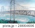 鳴門大橋 渦潮 鳴門海峡 28664606