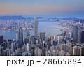 アジア ベイ 湾の写真 28665884