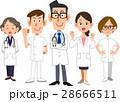 医者 チーム 男女のイラスト 28666511