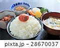 日本の和食 28670037