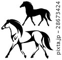 running horse black and white side view vector 28673424