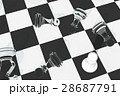 チェス 28687791