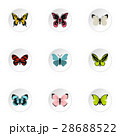 Types of butterflies icons set, flat style 28688522