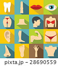 Body parts icons set, flat style 28690559
