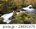 奥入瀬渓流 阿修羅の流れ 奥入瀬川の写真 28691470