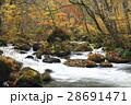 10月 石ヶ戸の瀬-紅葉の奥入瀬渓流- 東北の秋  28691471