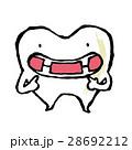歯 28692212