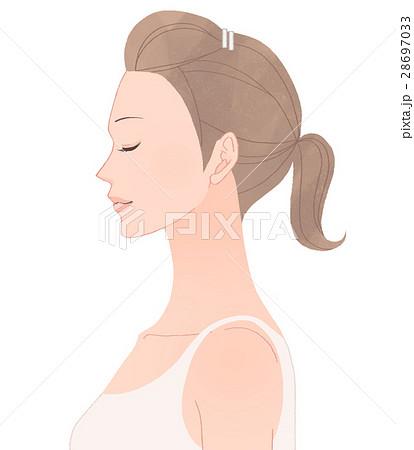 女性の上半身 横のイラスト素材 28697033 Pixta