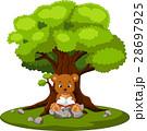 くま クマ 熊のイラスト 28697925