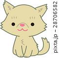 ペルシャ猫 猫 お座りのイラスト 28706582